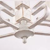 Ferro bianco di colore & paralume rotondo del tessuto per illuminazione del lampadario a bracci (D-6112/5)