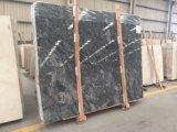 Ozean-Stern-Platte-Marmor-Stein für Wand, Fußboden und Countertop