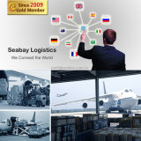 Servicio profesional de carga aérea desde China a todo el mundo