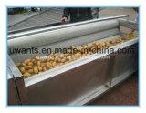 Máquina de Lavar Roupa da escova de alta eficiência para as frutas
