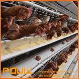 鶏のための養鶏場の層そして肉焼き器鶏のケージ