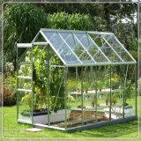 식물성 온실을%s 산만한 강화 유리