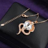 Insieme di cristallo della collana delle donne dell'ultima di modo dei monili radura di modello di lusso del serpente