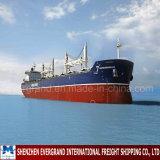 Confiável consolidação do transporte da China para a Nicarágua