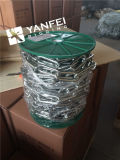 Longue chaîne de tige de l'acier inoxydable DIN763