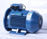 Enegy-Bewarende van de Fase van de hoge Efficiency Ye2 3 Elektrische Motor