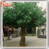 Guangzhou Supplier Fiber Glass Artificial Banyan