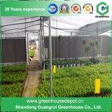 꽃 또는 과일 또는 야채 차양 시스템을%s 가진 성장하고 있는 폴리에틸렌 필름 녹색 집