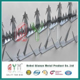 Anti Climb Wall Spikes/Razor Security Wall Spikes Fence