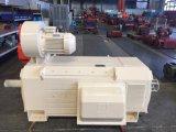 260KW motor DC eléctrico