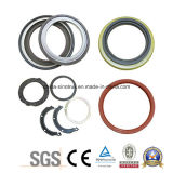 Fornecimento Profissional Mercedes Benz Kamaz Oil Seal Sealing Elements of 740215 7401005160-01 4320-100127