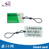 Intelligentes Chip RFID MIFARE Ultralight EV1 EpoxidKeychain
