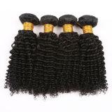 Cheveux afro Kinky Curly brésilien Weave Bundles Cheveux humains