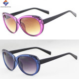 Óculos de sol de venda quentes do plástico do frame