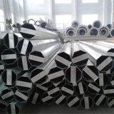 Distribution Mât en acier de tuyaux en acier de livraison
