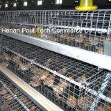 Гальванизированная клетка курочки батареи машинного оборудования фермы цыпленка Breeding с автоматический подавать