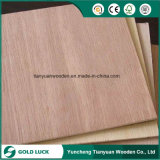 18mm M. Glue Commercial Plywood