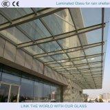 Lamelliertes Glas Pailings/lamelliertes Glas-Zäune/lamelliertes Glas-Markise