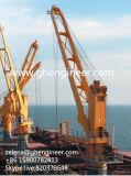 Grue pour transborder la cargaison des navires