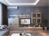 Neue Art-Wohnzimmer-Möbel-elegante Aufenthaltsraum-Möbel (zk-008)