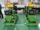 генератор энергии Biogas 10-50kw для фермы с ISO CE