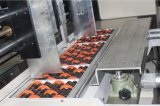 Máquina automática da cartonagem para caixas de transporte do cartão
