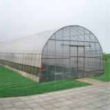 Зеленая дом для Vegtables с охлаждать и оросительной системой