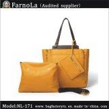 Dame Leather Shopping Handbags (NL-171)