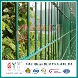 二重棒のプライバシーの金網の塀の/Doubleのループ金網の塀
