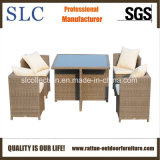 Muebles al aire libre del ahorro de espacio/muebles al aire libre impermeables (SC-B6133)