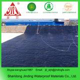 HDPE Geomembrane para o forro da lagoa