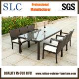 Des meubles en osier de plein air/meubles en osier/meubles de salle à manger ensemble (SC-B6023)
