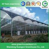 Fabricante de vidro da estufa do preço de fábrica com sistema de ventilação