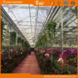 Auto 환경 Control System를 가진 중국 Supplier Glass Greenhouse