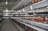 Het automatische die Systeem van de Kooi van de Kip van de Laag in het Type van Huis H van het Gevogelte wordt gebruikt