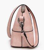 Het Leer van de merknaam Dame Tote Handbag voor Ontwerper (LDO0-1660)