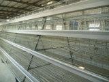 Poul 기술 가득 차있는 자동적인 층 닭 감금소 장비