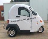 Elektrisches Miniauto (SP-EV-11)