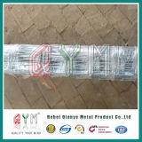고품질 가축 담 필드 담 농장 담 최신 판매
