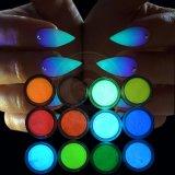 어두운 분말 빛난 안료에 있는 12의 밝은 색깔 네온 놀