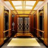 VvvfのFujizy 1.0m/S 630kgの安いホーム承認されるエレベーターおよびセリウム