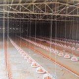 Geflügelfarm-Gerät mit Haus-Aufbau im Berufsteam-Service
