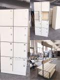 El armario de HPL impermeable para Vestuarios