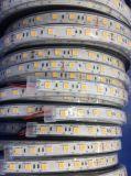 IP65는 LED 지구 빛, LED 빛 지구를 방수 처리한다