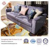 Ökonomische Hotel-Möbel mit dem Sofa eingestellt für Vorhalle-Aufenthaltsraum (HL-X-5)