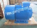 Uso Industrial Trifásico Y2 Series Asychronous Motor eléctrico com 100% de fio de cobre puro