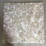 Houten kijk 3D Tegels 60X60mm van de Vloer van Ceramiektegels