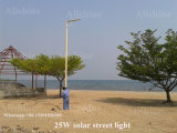 Factory Direct IP65 Bridgelux 25W Solar LED Street Light Prix