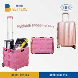 O melhor carro da cesta de Quanlity feito em China