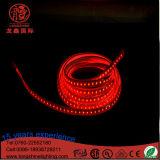 옥외 훈장을%s 110V-230V 60LEDs LED SMD 5050 가벼운 지구